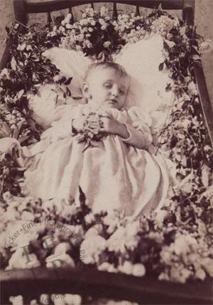 Child in a flower-strewn cot